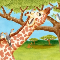 Oxpeckers_pp14-15web