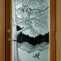 Owl & Dragonfly