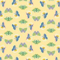 ButterflyPattern3Hc